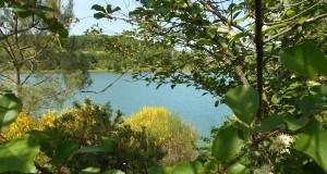 Le lac au printemps